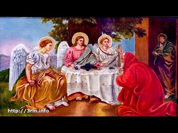 ГРОЗНОЕ И СТРАШНОЕ ЗНАМЕНИЕ В Хевроне упал Мамврийский дуб