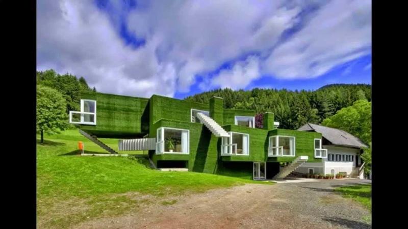 Безумно зеленый проект