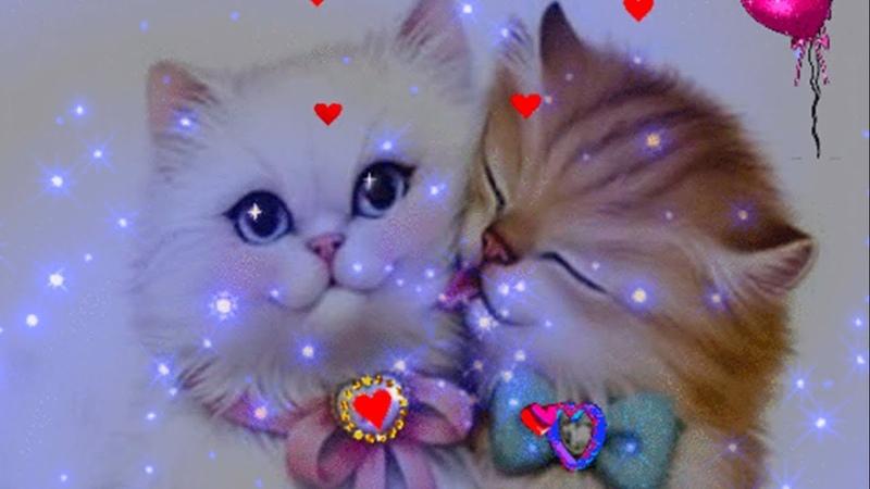 Любимая Спокойной Ночи Прекрасных Снов