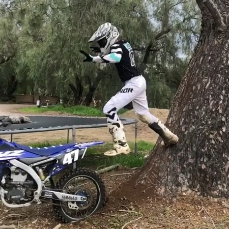"""MxShowcase 