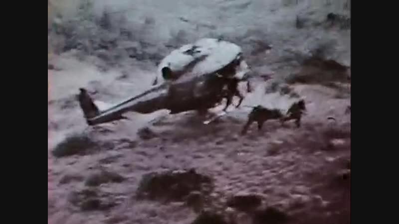 Война во Вьетнаме. В ад и даже дальше. Часть 2.