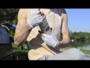 FRESH YERBA MATE — сироп изготовлен из натуральных листьев мате