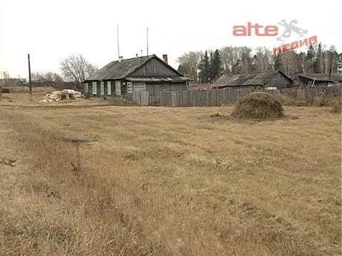 О делах насущных села Шогринское