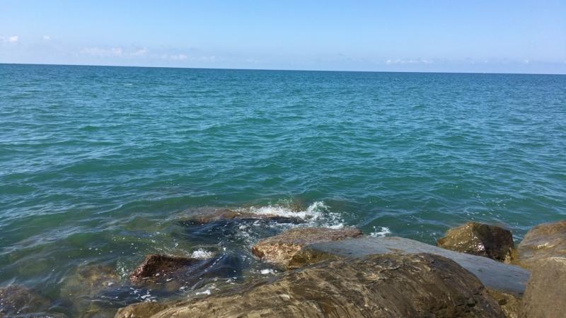 Стратегия голубого океана Краткий обзор