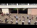 Последний звонок Флешмоб 5 школа 9 классы 2018г