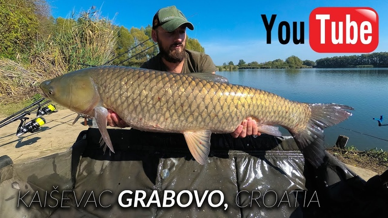Carp fishing Beautiful fishing moments at Lake Kaiševac