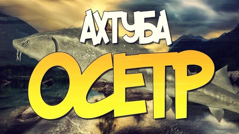 Русская Рыбалка 4 Новая точка на Осетра