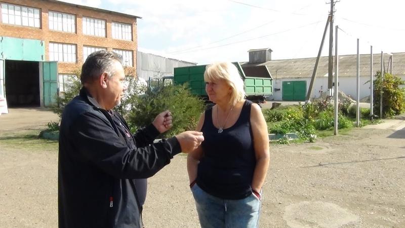 Пшеница-68 центнеров с гектара, протеина 15% с Кумицким Олегом Петровичем.