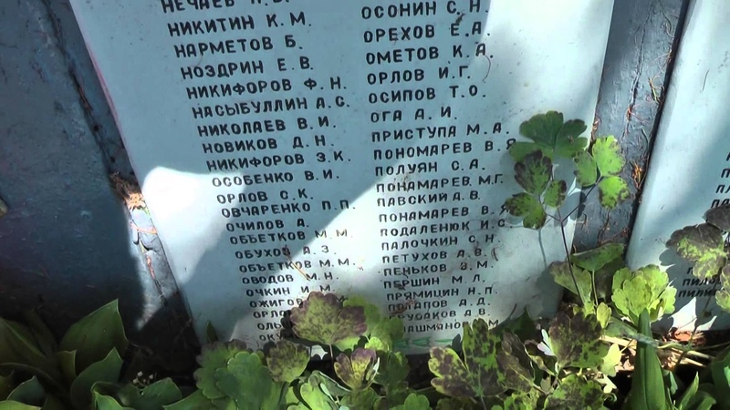 Воинское захоронение, село Давыдово, г. Старая Русса, Новгородская обл.
