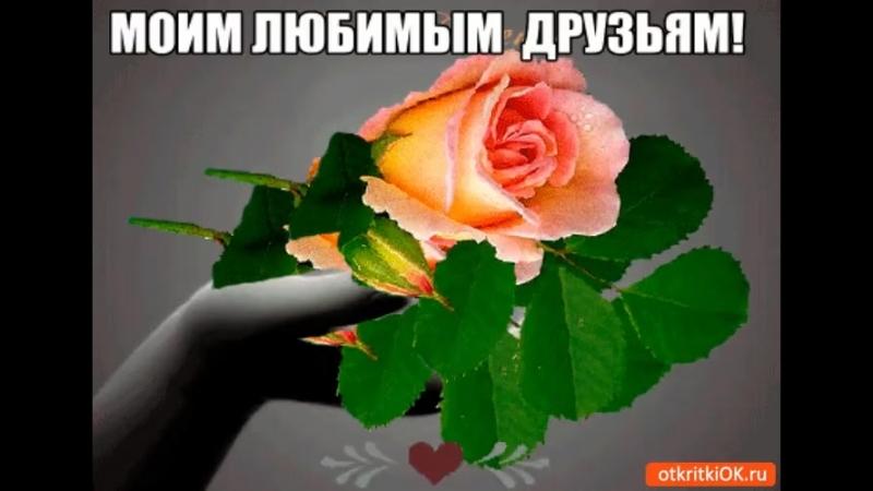 Doc339862550_477294166.mp4