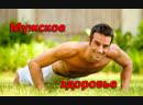 Мужское Здоровье от НСП (к.м.н. В.Антилевский)