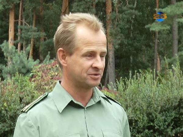 ДП Зміївське лісове господарство (фільм)