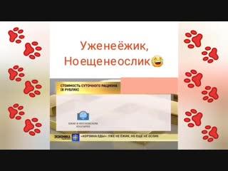 О потребительской корзине граждан РФ - «Уже не ёжик, но ещё не ослик»