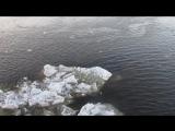 Вид с Дворцового моста. Город мечты и вечных дождей и туманов. вид. 554