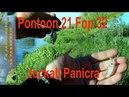 JACKALL PANICRA.Мастер класс от Pontoon 21 Fop 32.Ловля голавля спиннингом.