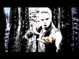 SALTATIO MORTIS - We Drink Your Blood (POWERWOLF Cover)
