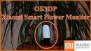 Xiaomi Smart Flower Monitor обзор анализатора почвы и освещённости для комнатных растений