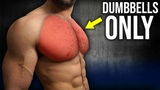 5min Home CHEST Workout (DUMBBELLS ONLY NO BENCH!!)