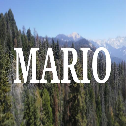 Mario альбом Your My
