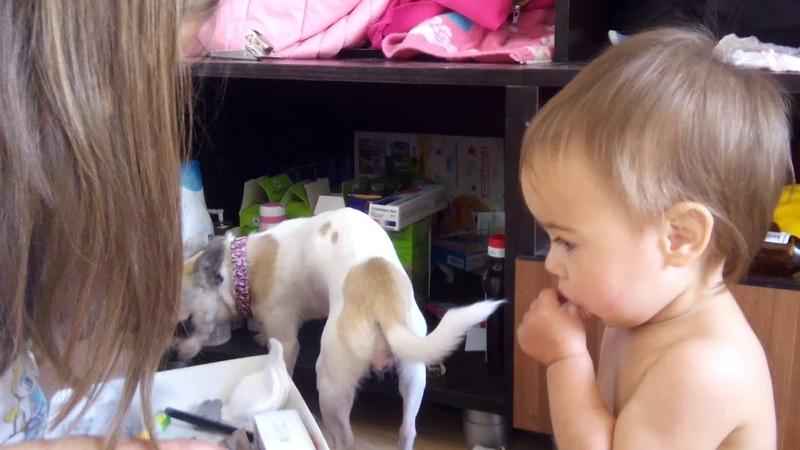Аэлита делает ревизию в ящике, а Злате с Майей интересно)