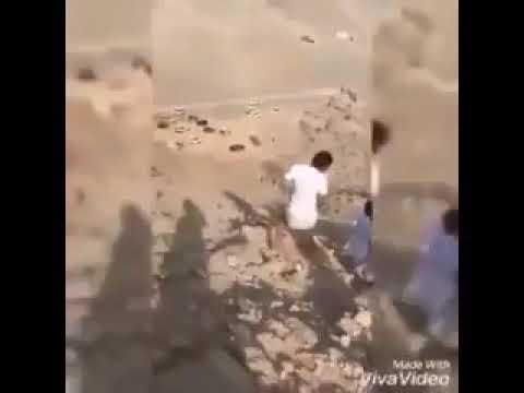 Мерри Поппинс ибн аль Хадид