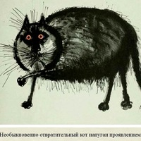Кира Жданова