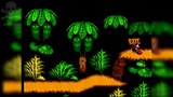 [Famiclone-50HZ]EL-033 Donkey Kong Country 4 - Gameplay