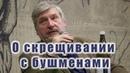 Профессор Сергей Савельев о скрещивании европейцев с бушменами