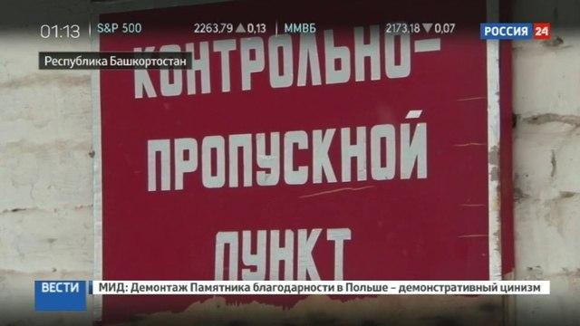 Новости на «Россия 24» • Страшная судьба черных копателей
