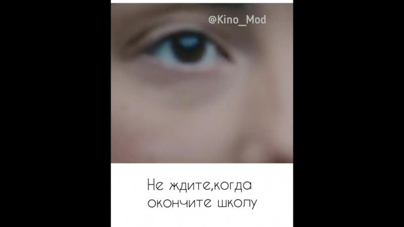 Instagram_kino_mod_42870390_240977379928308_5154335594175791104_n.mp4