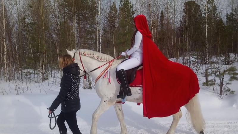 Сказочные фотосессии в конном клубе Догони ветер!