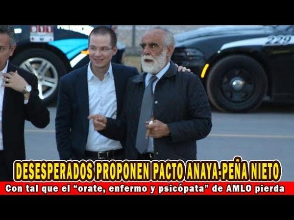 Desesperado Fernández de Cevallos propone no descarto pacto Anaya Peña