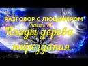 РАЗГОВОР С ЛЮЦИФЕРОМ Часть 16 Плоды дерева мироздания