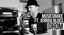 MusicSnake ft Jerrra Blues Drom Promo