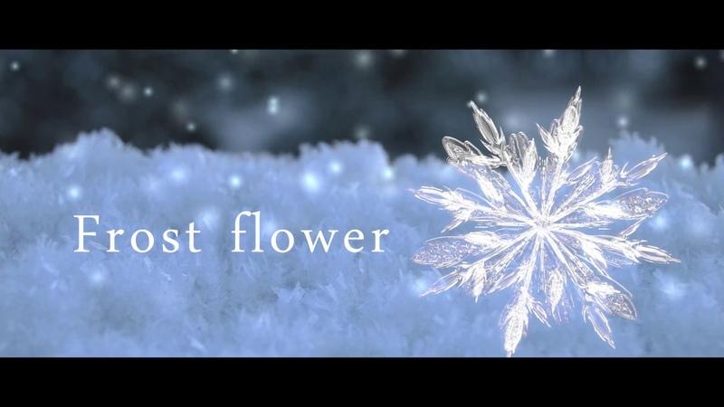 Frost flower 【健音テイ オリジナル】