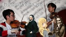 THE EVOLUTION OF VIOLIN MUSIC