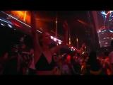 Wolfpack - Tomorrowland 2018