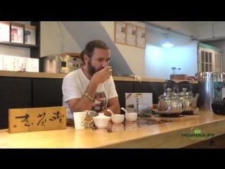 Сергей Шевелев - Тайвань. Путешествие в Алишань. Производство Габа (ГАМК) чая