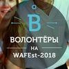 Волонтерское движение на WAFEst 2018