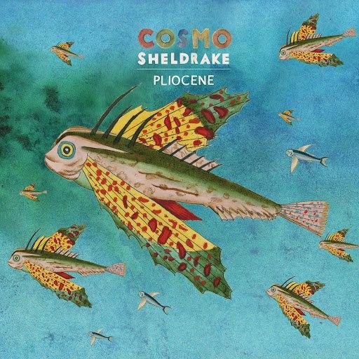 Cosmo Sheldrake альбом Pliocene