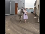 Балерина и лошадка