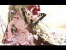 Osu Aitsuki Nakuru Monochrome Butterfly