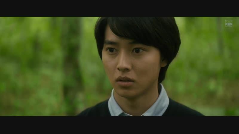 [АрхиТеатр] Лес шерсти и стали   A Forest of Wool and Steel   Hitsuji to Hagane no Mori [оригинал]