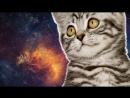 OSU! Ламповая Няша (Enjoykin cover) (Неудачная попытка)