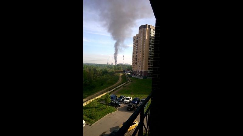 Незаконное сжигание химических и пищевых отходов в Девяткино. Ежедневно. Люди задыхаются.