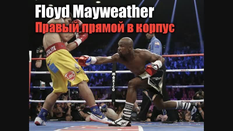 Floyd Mayweather - Правый прямой в корпус