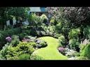 Удивительно красивое и полезное оформление границ дачи. Великолепный фон для ваших цветов.