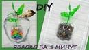 Как сделать ЯБЛОКО из пластиковых бутылок/DIY/How to make an APPLE from plastic bottles