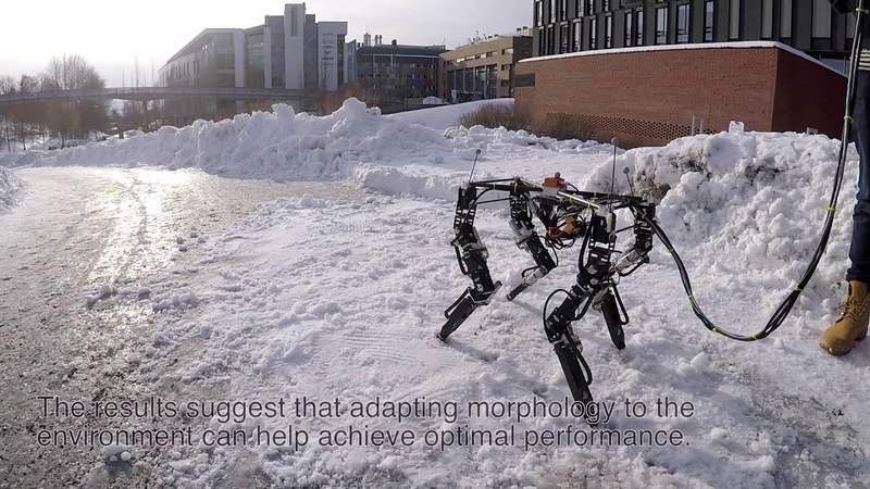 DyRET: Dynamic Robot for Embodied Testing dyret: dynamic robot for embodied testing