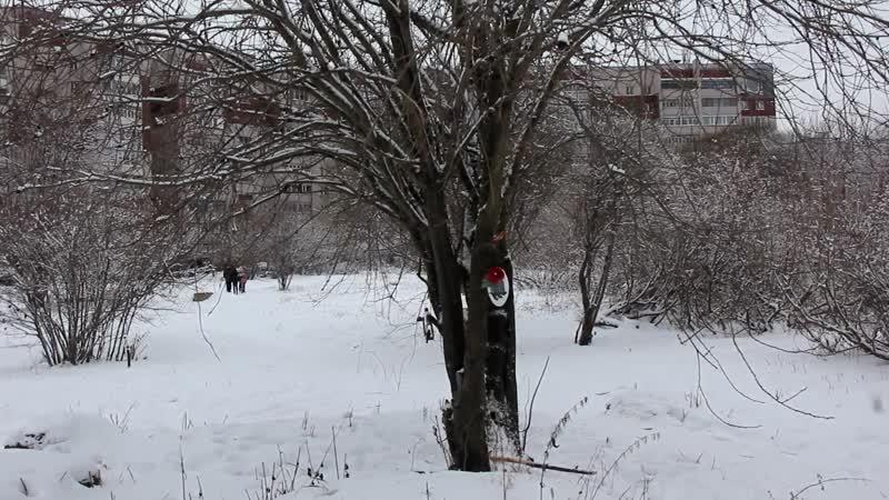 Ноябрь 2016г во Фрязиновском_парке